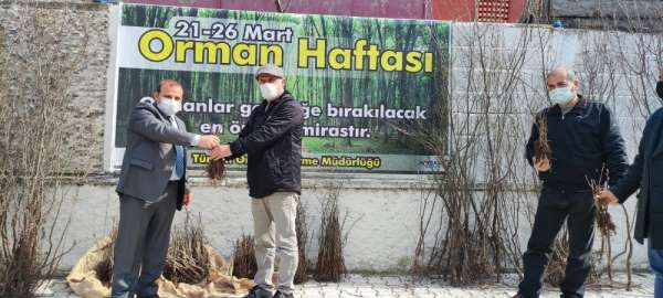 Türkelide vatandaşlara fidan dağıtımı yapıldı