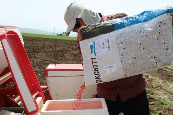 Çiftçiler, Ramazan ayında sıcak ve Covid-19'a rağmen tohumları toprakla buluştur