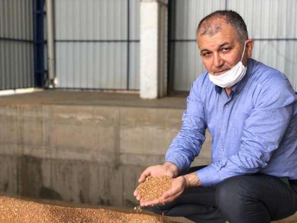 Kızıltepe'de hasadı başlayan kırmızı mercimek hububat merkezine getirildi