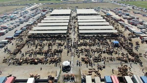 İç Anadolunun en büyük hayvan pazarında kurban Bayramı yoğunluğu