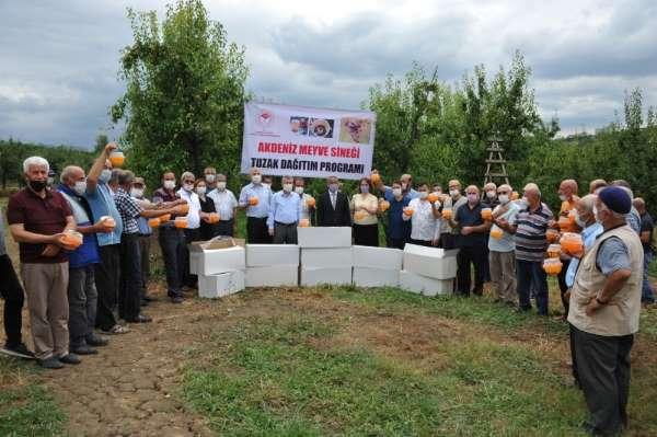 Büyükşehir Belediyesi'nden meyve üreticisine destek