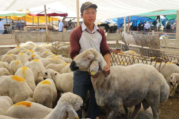 Hayvan pazarında son gün dampingi