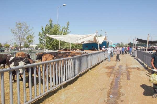 Konyada Kurban Bayramı arifesinde pazarlarda sakinlik