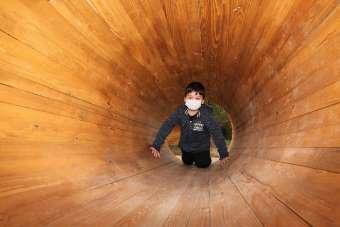 Türkiye'nin ilk devlet destekli 'Orman Okulu'nda eğitimler başlıyor