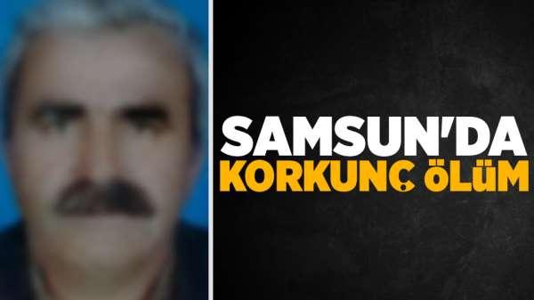 Son Dakika!Samsun'da traktörün altında kalan yaşlı adam hayatını kaybetti