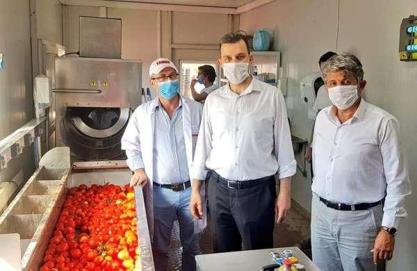 Esgin'den domates üreticisine bir müjde daha