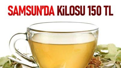 Samsun'da kilosu 150 TL'den satılıyor