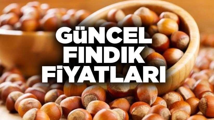 21 Kasım Samsun fındık fiyatları, İl il fındık fiyatları listesi