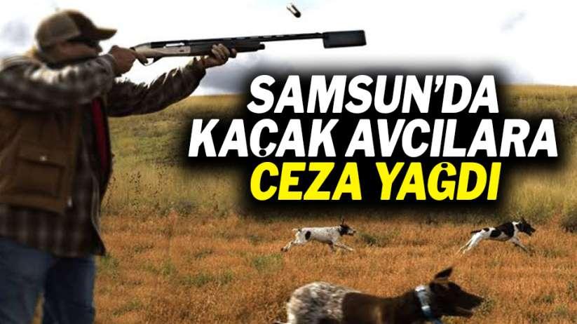 Samsun'da kaçak avcılara ceza yağdı!