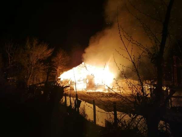 Sinopta ahır yangını: 12 büyükbaş hayvan telef oldu