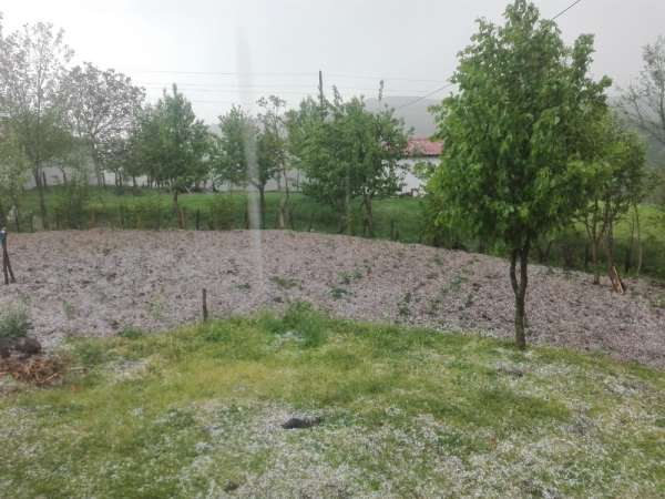 Ordu'nun yükseklerinde şiddetli dolu yağışı