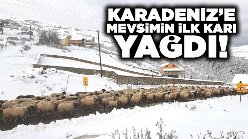 Karadeniz'e mevsimin ilk karı yağdı
