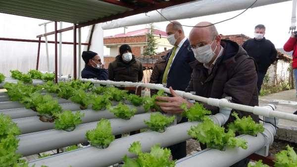 Doğu Karadeniz'de topraksız tarım dönemi