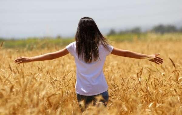 Buğday hasadı başladı, çiftçinin yüzü gülüyor