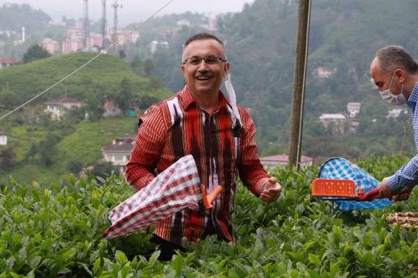 Rize Valisi Kemal Çeber: 'Çay toplamak için Rize'ye gelmek isteyenlerin sayısı 3
