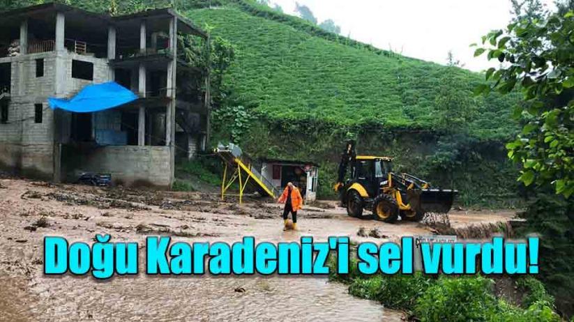 Doğu Karadenizi sel vurdu!