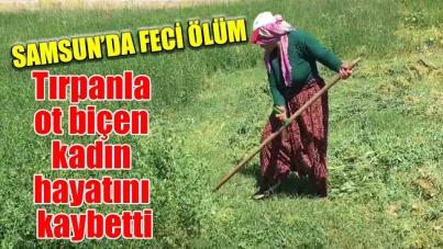 Samsun'da tırpanla ot biçen kadın hayatını kaybetti