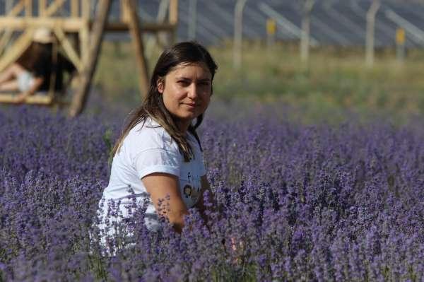 Kadın girişimci bozkıra lavanta bahçesi kurdu