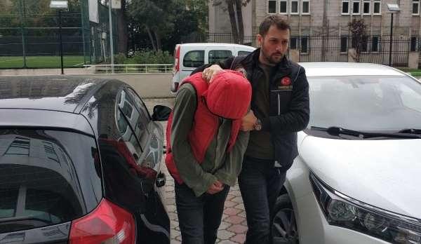 Samsun'da bonzai üretimiyle ilgili 1 kişi tutuklandı