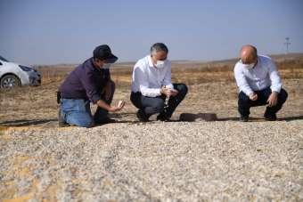 Şahin, 'Kırsal alandaki gelişme ülkenin kalkınmasında etkili olacak'
