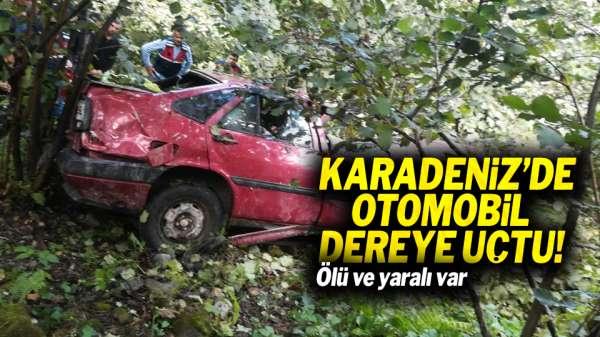 Karadeniz'de otomobil dereye uçtu: Ölü ve yaralı var