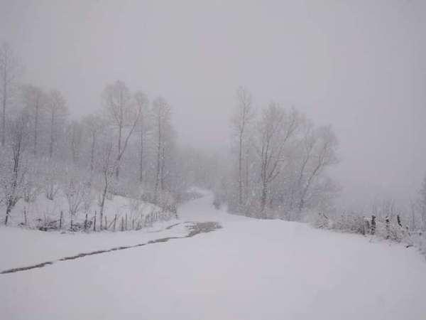 Orduda bahar ayında kar sürprizi