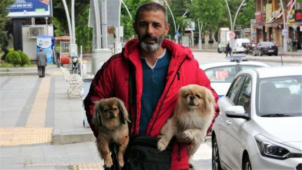 Sokağa çıkma kısıtlamasında ilk günü köpeklerini gezdirdi, yem bıraktı