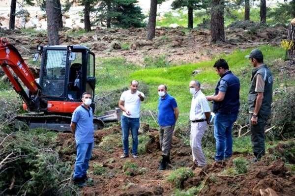 Bölge Müdürü Keskin: 'Ormanlarımızı gençleştirmek için çalışıyoruz'