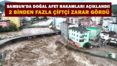 Samsun'da doğal afet rakamları açıklandı! 2 binden fazla çiftçi zarar gördü