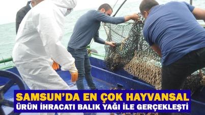 Samsun'da en çok hayvansal ürün ihracatı balık yağı ile gerçekleşti
