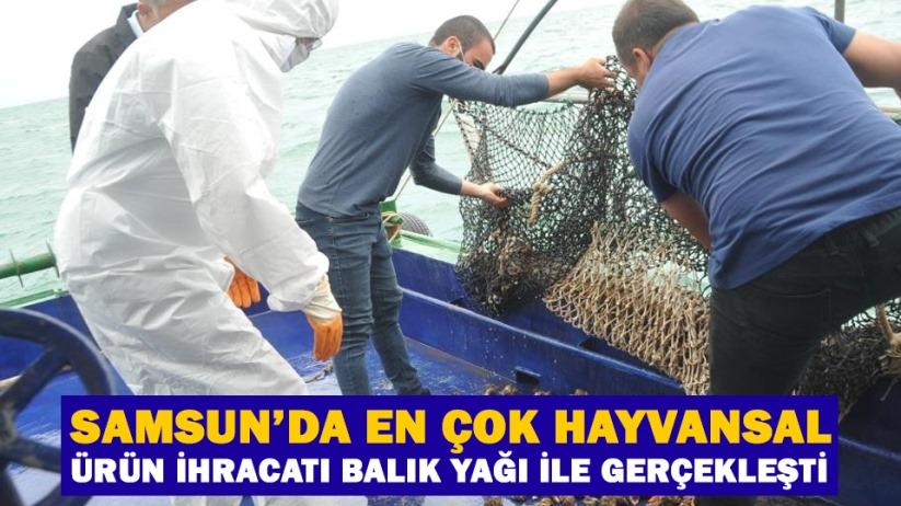 Samsunda en çok hayvansal ürün ihracatı balık yağı ile gerçekleşti