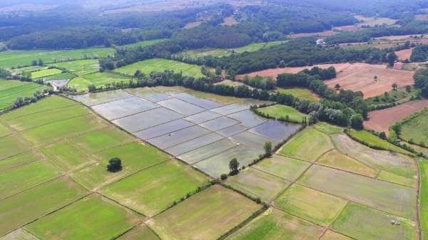 Sinop'ta 16 bin 50 dekar tarım arazisi sulandı