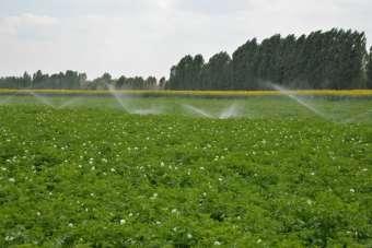 Denizli'de 2020 yılında 800 bin dekar tarım arazisi sulandı
