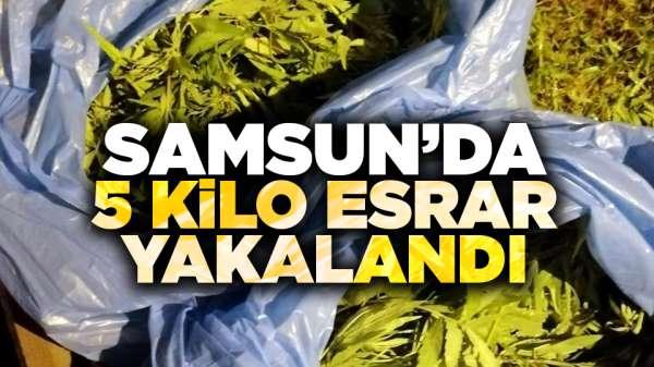 Samsun'da 5 kilo esrar yakalandı