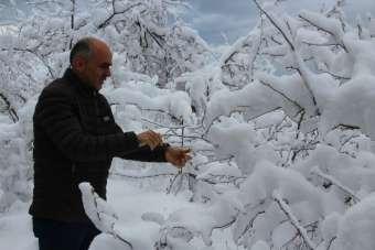 Kar fındık üreticisinin yüzünü güldürdü