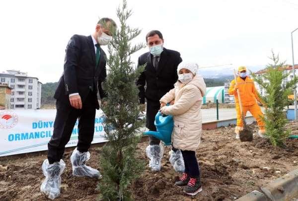 Vali Masatlı: Avrupada ağaçlandırma bakımından 1., dünyada ise 6. sıradayız