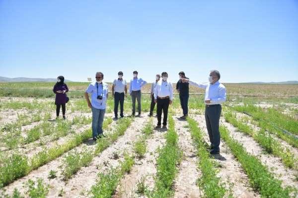 Yerli ve Milli Tohumun Ulaşamadığı Çiftçi Kalmayacak