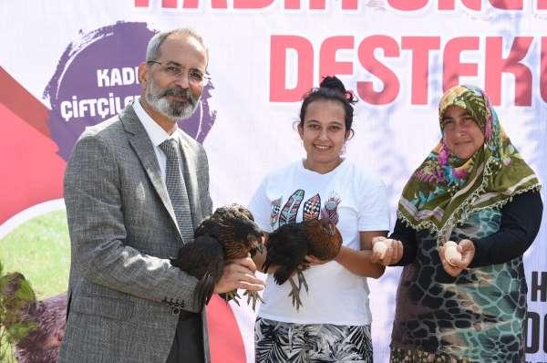 Tarsus Belediyesi, 200 kadına 5 bin canlı tavuk dağıttı