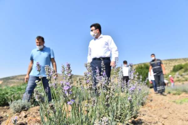 Altıeylül Belediyesi tarımsal kalkınmaya destek oluyor