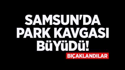 Samsun'da park kavgası büyüdü! Bıçaklandılar