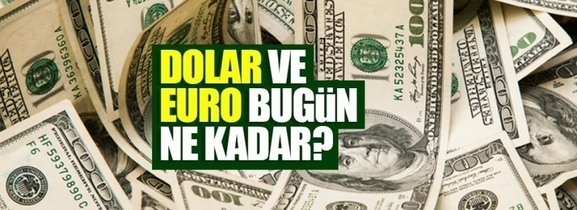 Dolar ne kadar, euro kaç TL 24 Ocak 2021 Pazar