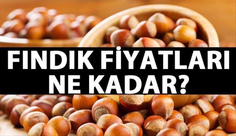 2NisanPerşembe Samsun fındık fiyatları ne kadar? Güncel fındık fiyatları