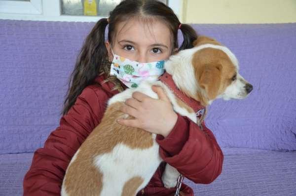 Cemre'nin 'Pamuk' gibi yüreğini tüm Türkiye sevdi