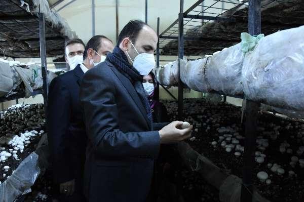 Başkan Altay: Aköreni mantarda ve susamda markalaştırmak için çalışıyoruz