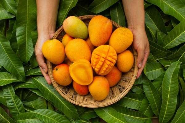 Türkiyenin tropikal meyve ihracatı 7 milyon dolara koşuyor