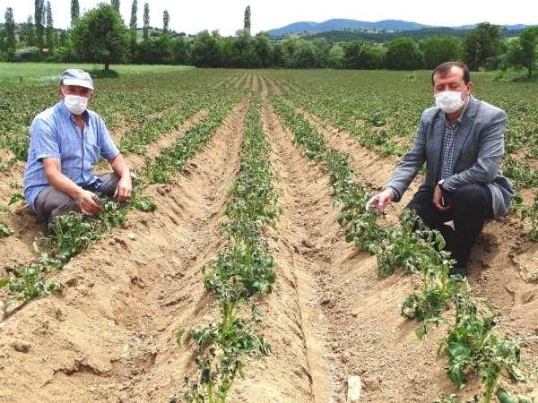 Başkan Yusuf Çalışkan: 'Çiftçilere Don Zararı Desteği ödemesi yapılsın'