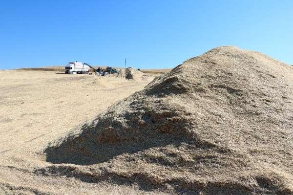 Türkiye'nin saman sıkıntısı yok