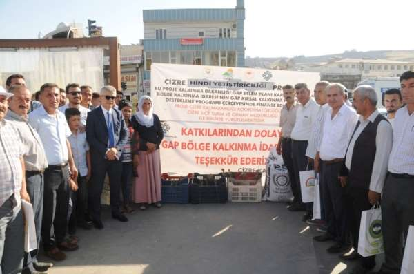 Cizre'de çiftçilere 10 bin adet hindi palazı ve 60 ton yem dağıtıldı