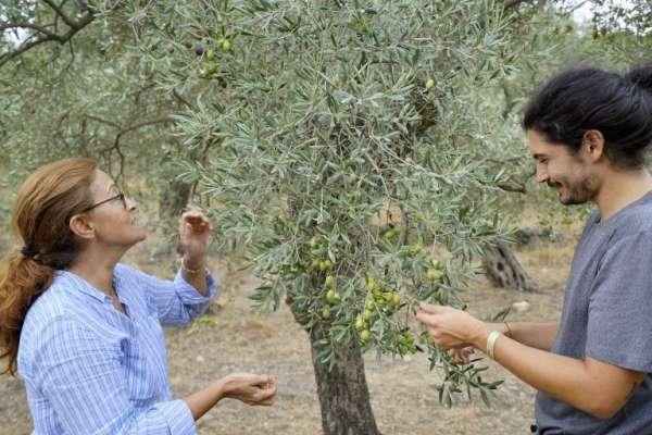 14. Ulusal Naturel Sızma Zeytinyağı Kalite Ödülleri Yarışmasında Aydına gümüş madalya