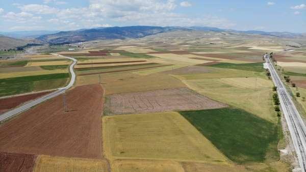 Bayat Ovasında 250 bin dönüm tarım arazisini kuraklık vurdu